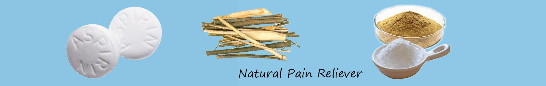 white willow bark extract powder